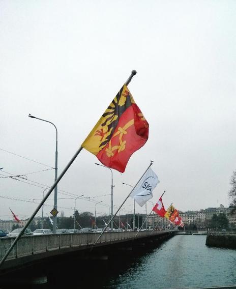 SIHHflag